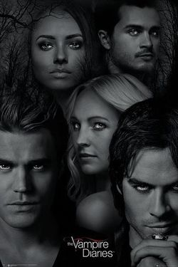 The Vampire Diaries Season 1 Episode 22 Watch Online The Full Episode