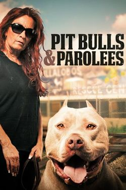 Watch Pit Bulls And Parolees Online Full Series Every Season Episode