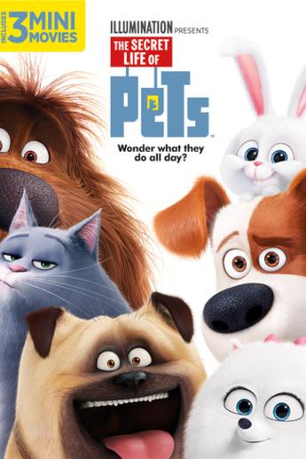 Pets Film Online Schauen