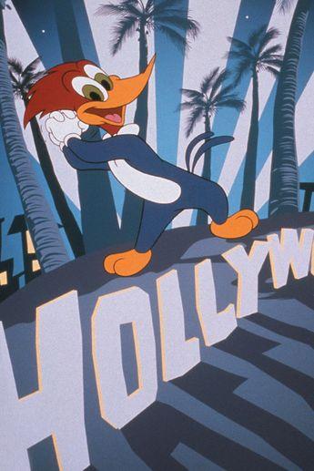 Watch The Woody Woodpecker Show Online   Seasons Episode