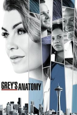 watch full greys anatomy episodes free